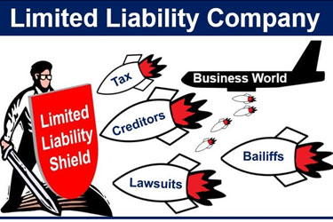 section 8 Company Benefits- Limited liability