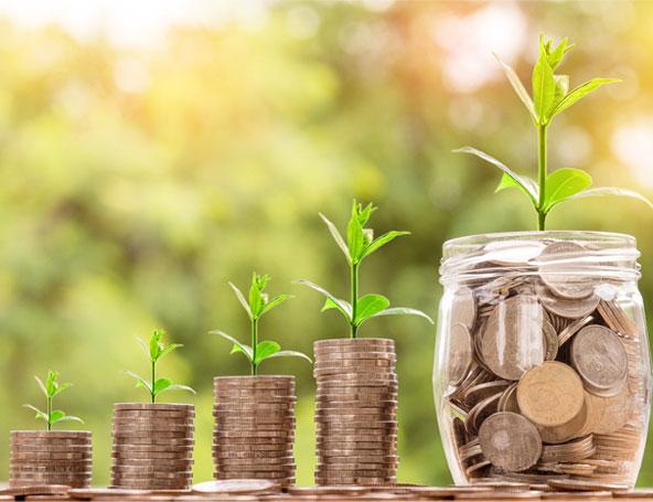 Increase Authorize share Capital